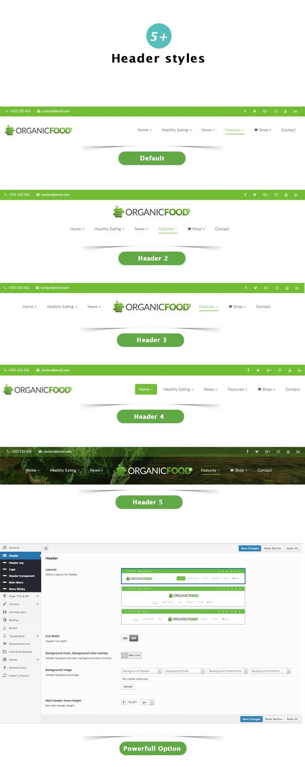 Organic Food - Farm & Food Business Eco WordPress Theme - 18